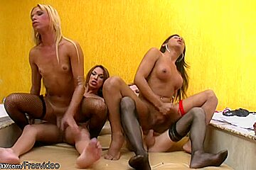 Shemale babes riding hard cocks and jerk in...